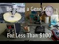How To Build A Gene Gun For Less than $100!