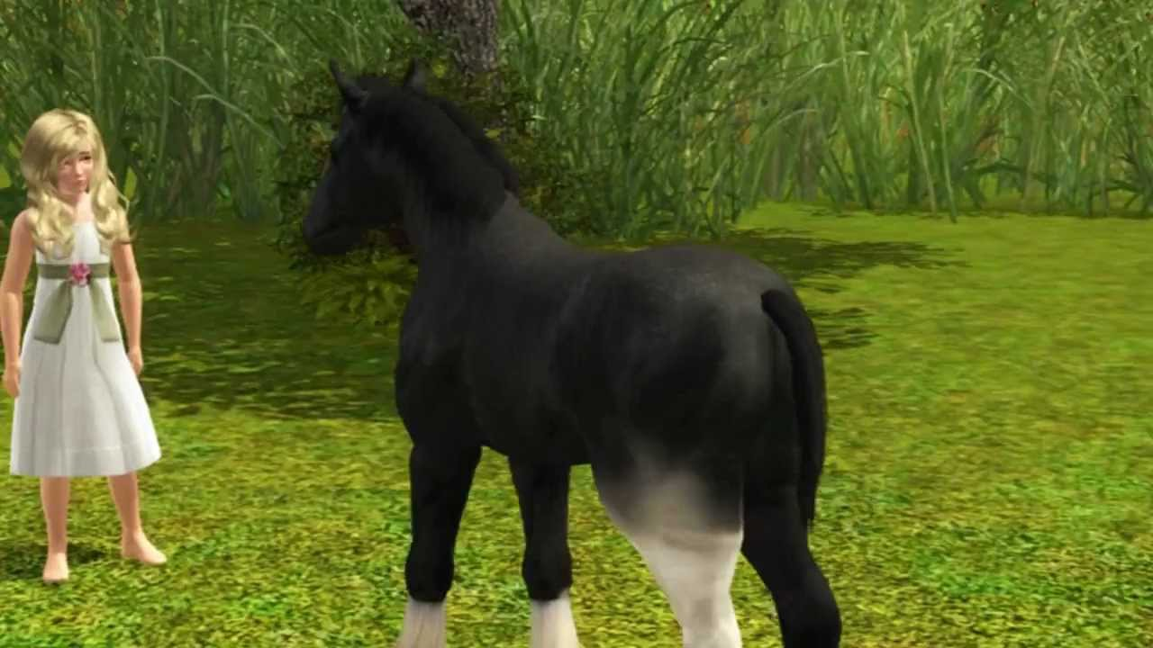 Very Cute Baby Hd Wallpaper Sims3 The Black Horse Youtube
