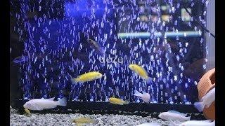 Cистема подачи воздуха на аквариум