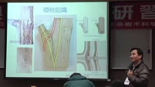 植栽管理新觀念 3.如何修剪 劉東啟博士