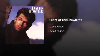 Flight Of The Snowbirds