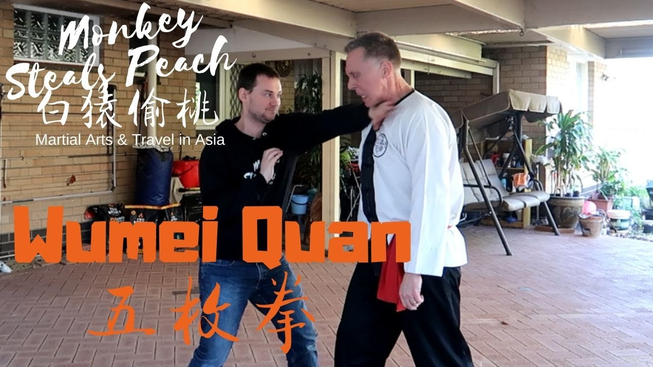 Wumei Quan's Iron Body & Sticky Hands - With Shane Francis p2