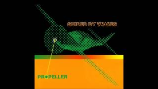 Guided By Voices - Over The Neptune/Mesh Gear Fox