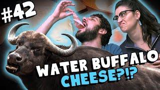 We Tried Cheese Made with Water Buffalo Milk! (Quadrello di Bufala) - #42