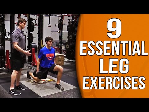 9 Essential Leg Exercises And Workout For Basketball Players