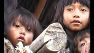 Niños warao