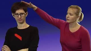 """Правила общения с глухими. Видеокурс жестового языка """"Давайте знакомиться"""""""