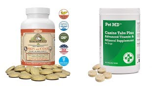 Top 6 Best Dog Vitamins And Minerals Reviews