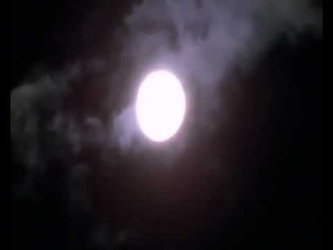 Blue Moon of Kentucky-Elvis Presley