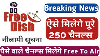 Dd free dish E Auction | New Channels Coming soon on dd free dish | dd dth | dth free dish