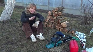 видео обрезка старых яблонь