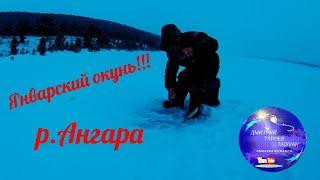 Январский окунь Зимняя рыбалка на Ангаре