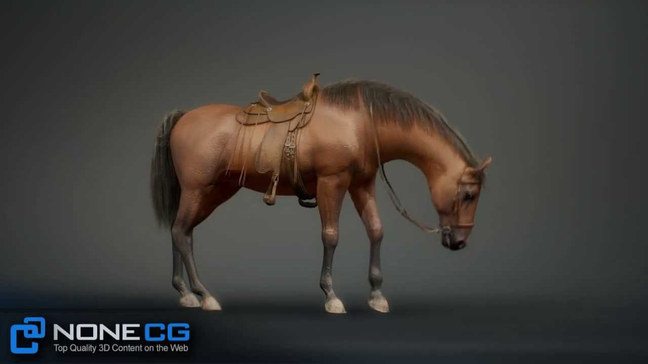 3d Model Animated Rigged Horse For Maya Now Available On Cgriver Com Walk Trot Gallop Jump