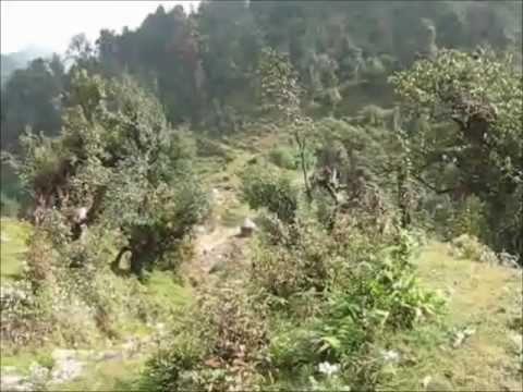 PATHIVARA,TAPLEJUNG,NEPAL.