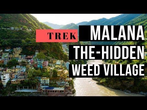 Himachal Day 3 : Malana trek | Parvati Valley | India's weed village | Hashish