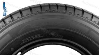 Видеообзор шины Michelin Agilis - [Autoshini.com]