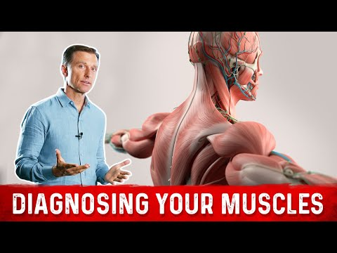 6 Things Muscles Tell You About Your Nutrient Status