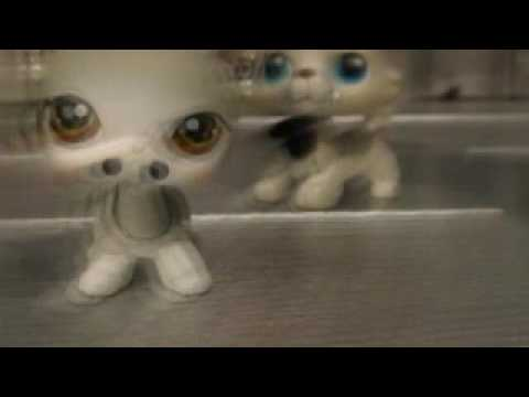 Lps Painless Nights Trailer