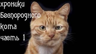 Хроники беспородного кота. Ч.1. Избавляемся от ушного клеща