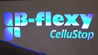 Чемпионат B-flexy!