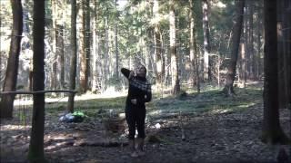 вращение шеста в лесу