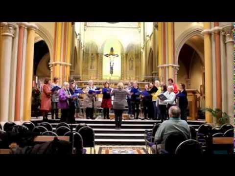 The Silver Stars - Michael Bojesen - Holmchase Singers, Jersey C.I.