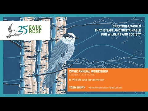 CWHC Workshop 2017: Wildlife and conservation