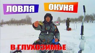 Ловля окуня в глухозимье Зимняя рыбалка на мормышку Рыбалка на Томи