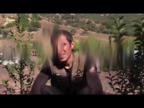 Van'da Çatışma Sonrası Öldürülen Pkk Leşleri