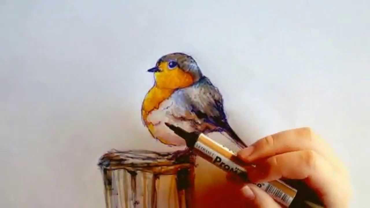 Dessiner un oiseau aux marqueurs et stylo par cynthia for Oiseau par la couleur