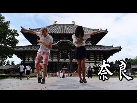 Day Trip to Nara, Japan - 奈良 日帰り