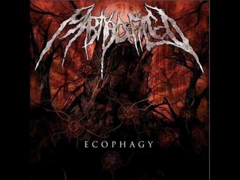 Martyr Defiled - Barren