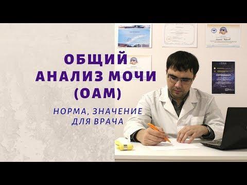 Общий анализ мочи (ОАМ): норма основных показателей, значение