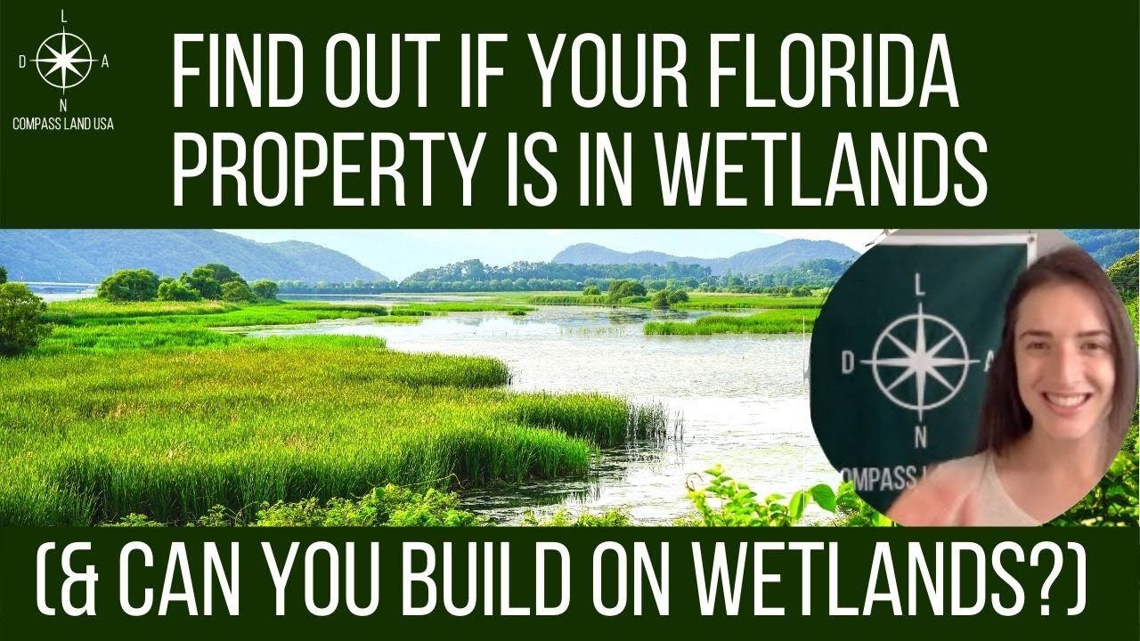 Find Out if Your Florida Property is in Wetlands & Can You Build on Wetlands?