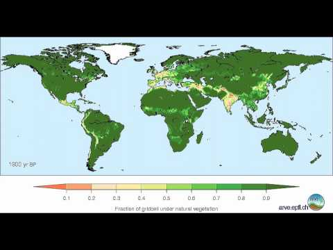 Global land cover change from 8000 BP to -50 BP