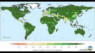 Global land cover change from 8000 BP to -50 BP‬