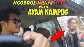 REVIEW AYAM KAMPUS MALANG - SUMPAH DIA NGAJAK KE H0TEL! (NO CLICKBAIT)