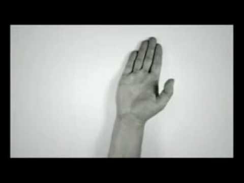 Bàn tay phù thủy của nguyễn-phương