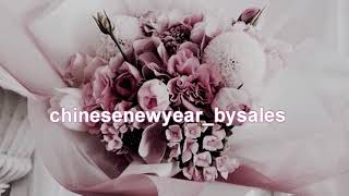 chinese new year by sales