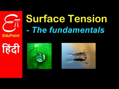 Surface Tension in liquids | Physics explained in HINDI | EduPoint