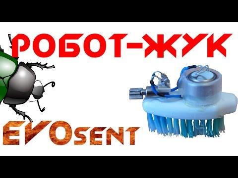 Робот-жук своими руками из зубной щетки.