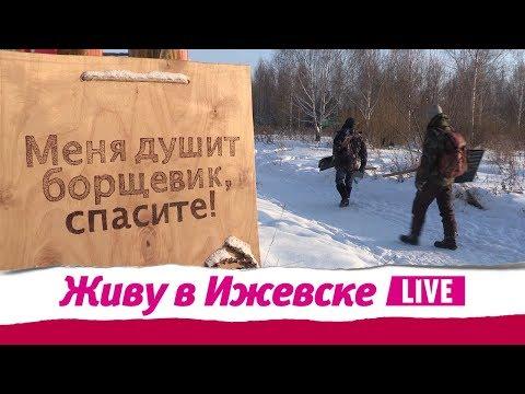 Живу в Ижевске 24.01.2019