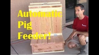 Automatic Pig Feeder