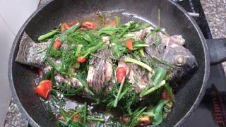 Cách làm món cá hấp ngon không tanh