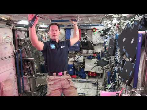 Space Station Crew Member Discusses Life in Space with French Officials