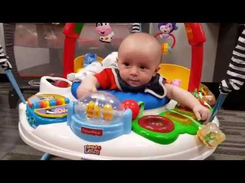 Fisher Price Laugh And Learn Farm Jumperoo