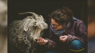 Talented Photographer Whose Niche is Fairs, Farms, Food and Chefs