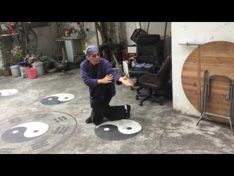 Master Zhang doing the ancient Tai Chi from Sacred Wudang Mountains (filmed by Daniel Mitel)