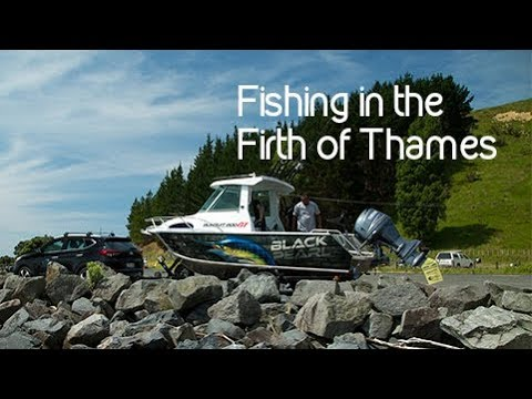 Fishing in the Firth of Thames