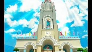 Lễ Khánh Thành và Cung Hiến Thánh Đường Gx  An Phú